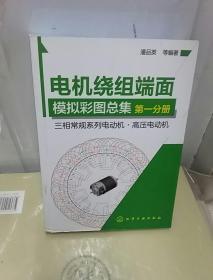 电机绕组端面模拟彩图总集·第一分册