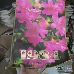 1984年花绘挂历十三张