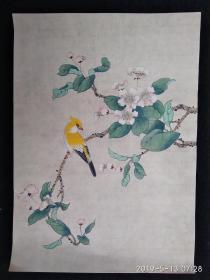 精彩花鸟工笔画 (反面有背胶)