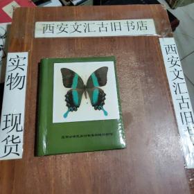 昆明云南民族村斯美蝴蝶博物馆