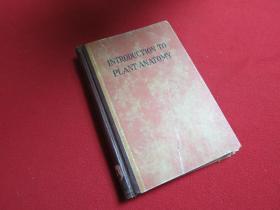 植物解剖学道论  1951  外文看图