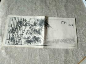 未署名画家画稿《手绘  竹林(1988年)》长40厘米,宽18厘米!放2019册内!!