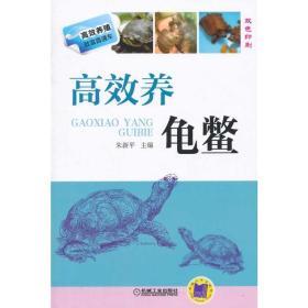 高效养龟鳖(高效养殖致富直通车)