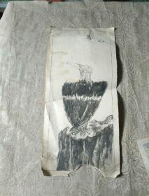 未署名画家画稿《手绘  鹰(1988年)》长40厘米,宽18厘米!放2019册内!!