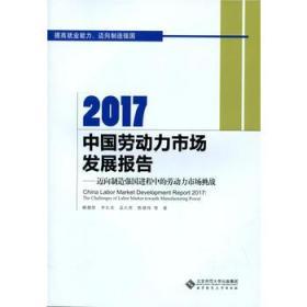 2017中国劳动力市场发展报告