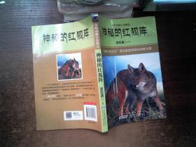 中外动物小说精品:神秘的红狐阵...