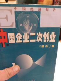 中国经济报告《中国企业二次创业》一册