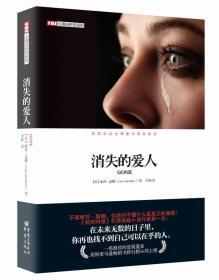 消失的爱人:FBI心理分析员系列