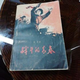 战斗的青春《1942年翼中平原抗日战争小说》