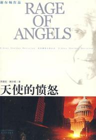 天使的愤怒