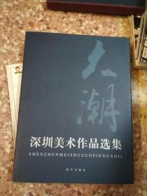 大潮 深圳美术作品选集            (袁南炽用书,有签名)