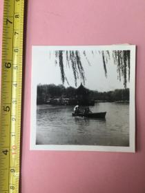照片,1966年,上海街景,上海和平公园,两张