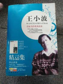 (现货)9787806982495 王小波精品集