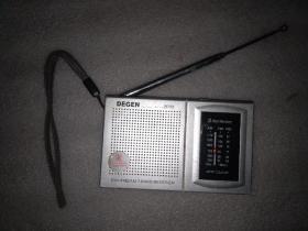 DEGEN 收音机(DE313)