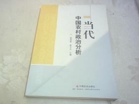 当代中国农村政治分析