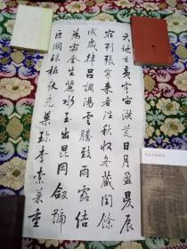 湖南书法家周克臣书法(临宋高宗书千字文)条屏17幅