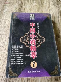 九十年代中国小说精品荟萃.7/中国小说精萃