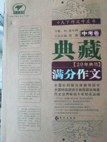 典藏20年典范满分作文(中考卷)