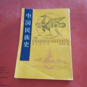 中国民族史下册