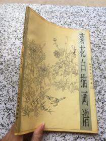 菊花白描画谱