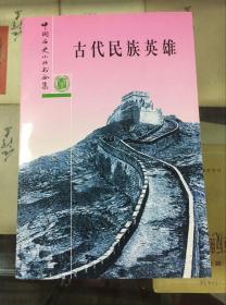 中国历史小丛书合集--古代民族英雄