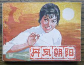 丹凤朝阳   (10-307)