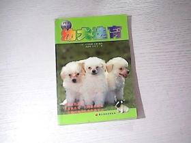 宠物系列幼犬选育