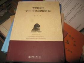 中国特色少年司法制度研究