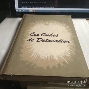 爆轰波(法语原版书)