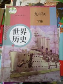 九年级历史下册(人教版