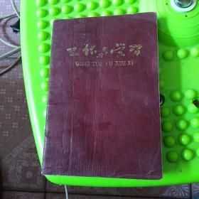 涉县红星中学 李国林 日记本 1966 8