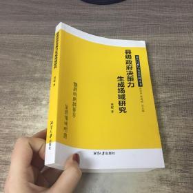 县级政府决策力生成场域研究