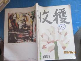 收获 1987  2