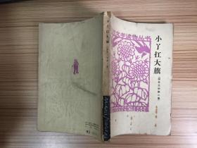 农村文学读物丛书《小丫扛大旗》(报告文学第二集)