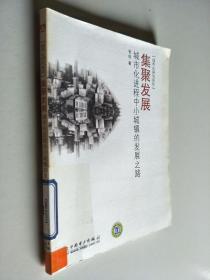 集聚發展:城市化進程中小城鎮的發展之路