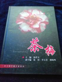 茶梅(16开精装 彩印)