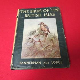 THE BIRDS OF THE BRITISH ISLES