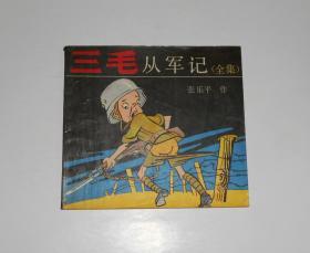 三毛从军记(全集) 1991年