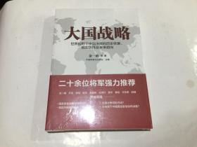 大国战略:世界视野下中国决策的历史依据、现实抉择及未来趋向