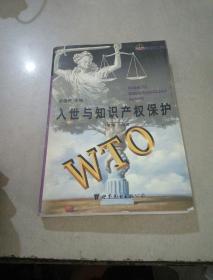 入世与知识产权保护WTO