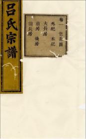浙江暨阳开化吕氏家谱(清代光绪丙子年老谱复印版)精选两册