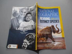 英文原版:National Geographic 美国国家地理(2013年4月号)