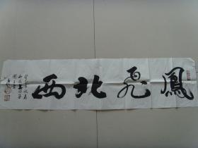 乔春起:书法:凤飞北西