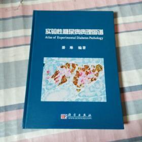 实验性糖尿病病理图谱