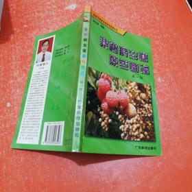 果树病虫害原色图谱 第一册