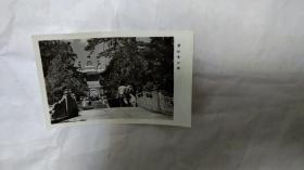 碧云寺公园照片