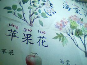六年制小学课本 语文第二册教学图片上[桃花苹果花、海棠花]2开