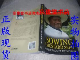 sowing the mustard seed