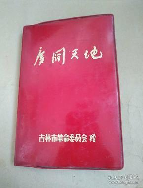 原吉林市十一中王天木(1973~1974)下乡工作笔记《广阔天地》