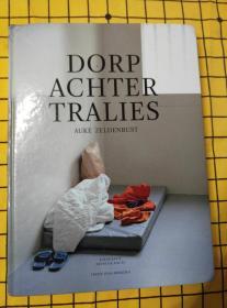 DORP ACHTER TRALIES(荷兰语原版)